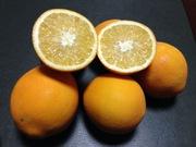 опт фруктов,  овощей напрямую из Турции