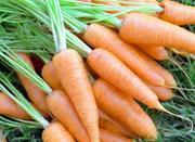 Морковь свежая.