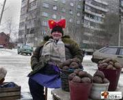 Продаем картофель в розницу