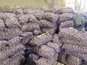 Картофель оптом от производителя от  4, 5р/кг