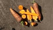 Морковь оптом в Кемерово
